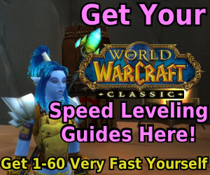 joana's leveling ad